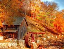 Old watermill in the middle of the forest - Autumn season