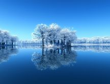Frozen trees mirror in the lake - HD wallpaper