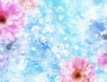 Flowers and crystals in the water - HD spring wallpaper