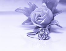 White and grey photo - wedding ring and a rose