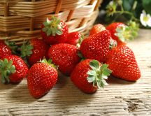 Delicious summer fruits - sweet strawberries