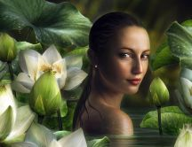 Girl in the water between white lilies - Fantasy wallpaper
