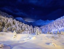 Winter on the mountains in the night