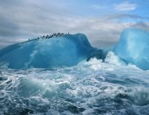 Many penguins on the blue ice in the ocean
