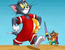 Tom and jerry on the beach in a summer day