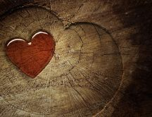 A red heart in the wood - Love wallpaper