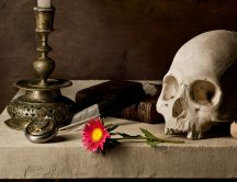 A skull, candle and pink flower on the stone table