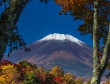 White mountain top Fuji and colorful forest