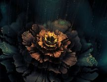 Beautiful abstract flower - Dark wallpaper