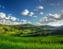 Beautiful green nature - Green hills in the sun light
