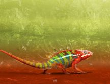 Colorful great chameleon - Reptiles wallpaper