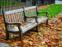 Dry leaves in the park - Wood bench