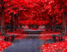 Red Autumn - Park alley in the mirror