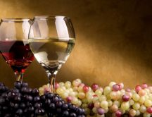 Autumn harvest - grape and wine