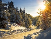 Mountain road full with snow - sunny winter day