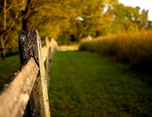 Macro wood fence on the countryside