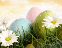 Colourful Easter Eggs in the grass - spring flowers