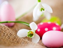 Snowdrops and colourful eggs - Happy Easter Holiday