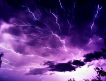 Purple sky - furious storm and lots of lightnings