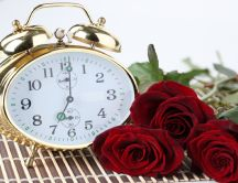 Seven clock in the morning - beautiful red roses
