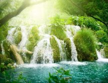 Refreshing water - wonderful waterfall in the Tropics