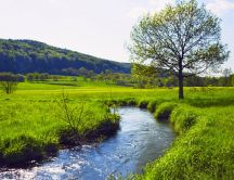 Mountain river through the green field - HD wallpaper
