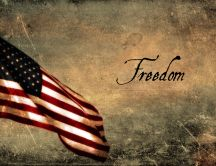 Freedom and USA flag - wonderful HD wallpaper