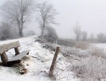 Fog over the white nature - Winter season