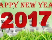 Happy New Year 2017 - HD wallpaper