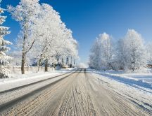White road full with snow - Wonderful Winter season