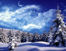 Blue magic winter night - Big moon over the forest