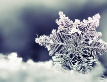 Macro wonderful frozen snowflake - HD Winter wallpaper