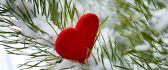 Little red heart on a winter tree full with snow