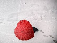 Umbrella love in the winter season - Happy Valentines Day