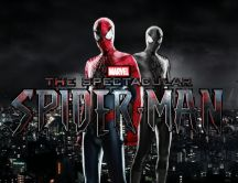 New Spider Man movie in 2017 - The Spectacular