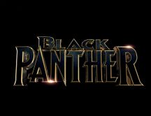 Black Panther - New movie in 2018 from Hollywood