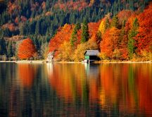 Wonderful nature landscape -Autumn forest mirror in the lake