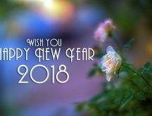 White and pink roses - Happy New Year 2018