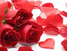 Three lovely red roses for a special person - Valentines Day