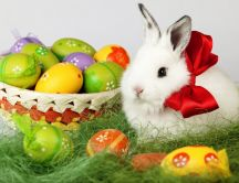 Fluffy white rabbit and a basket full with Easter eggs