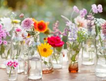 Beautiful spring flowers in bottles on the table