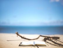 Read a book and stay relax on the beach - Happy Summer time