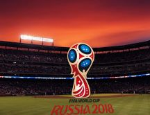Fifa World Cup 2018 Russia - Big Football field