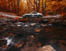 Grey sport car in the forest - Special Autumn season view