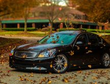Autumn wind and leaves on a wonderful black car