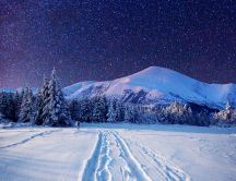 Cold winter night-Sky full with stars - Wonderful landscape