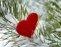 Red heart on a branch of tree full with snow - HD wallpaper
