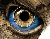 3D big blue and brown eye- Wonderful miscellaneous wallpaper