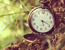 Watch the clock under the tree - Time travel