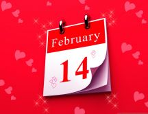 Red background pink hearts - 14th February Valentines Day